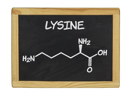 Herpes Lysine Treatment Dosage Arginine