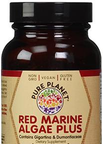 Red Marine Algae Herpes Supplement