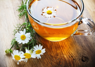 Chamomile Tea and chamomile oil for Herpes Outbreaks