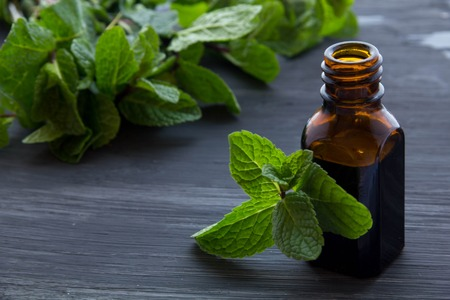 peppermint oil hsv